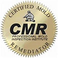 Certified Mold Remediation - Pittsburgh